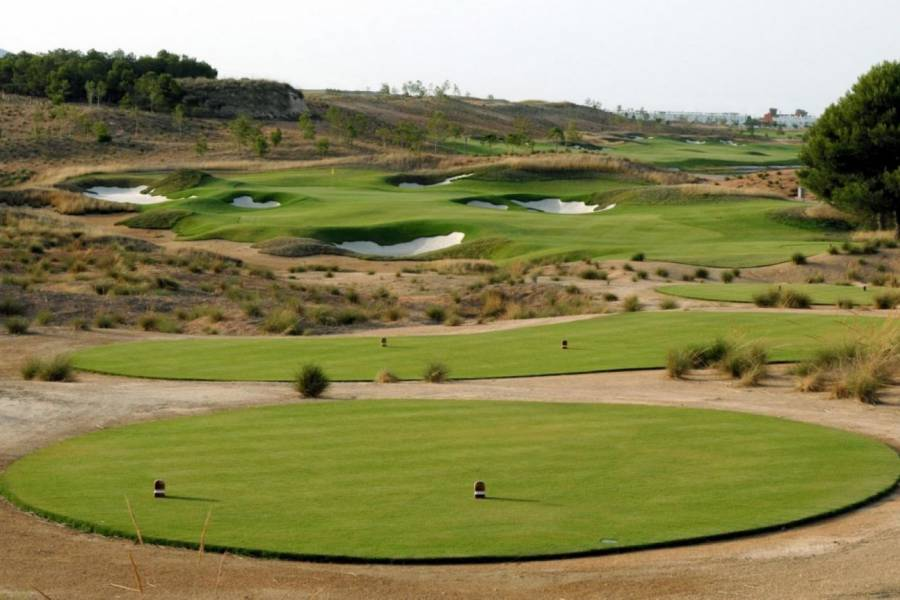New Build - Apartment - Alhama de Murcia - Condado de Alhama Golf Resort