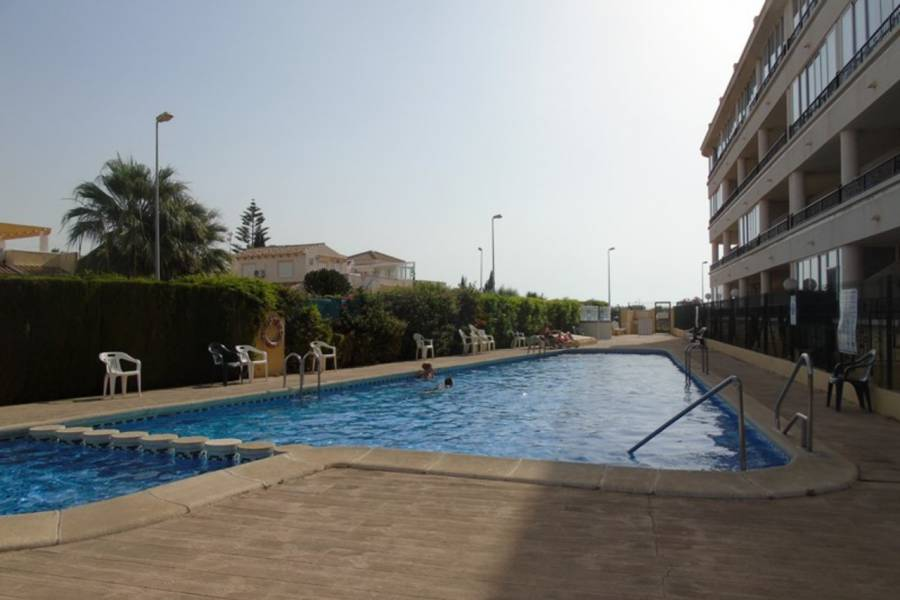 Bestaande bouw - Apartment - Playa Flamenca